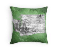 Washington Texture Throw Pillow