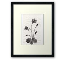 Ink flower Framed Print