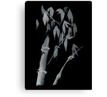 Bamboo negative Canvas Print