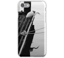 Alba Shallow iPhone Case/Skin