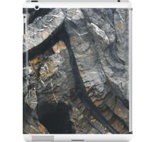 The Force of Stone iPad Case/Skin