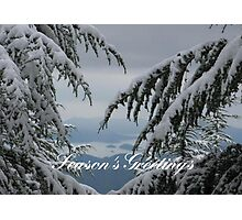 Pine Trees and Snow Season's Greetings From Fethiye Photographic Print