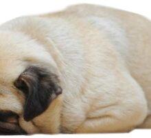 sleepy pug by illegalizes