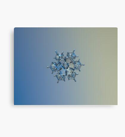 Flying castle (alternate colors), real snowflake macro photo Canvas Print