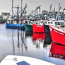 Fishing boats visitors... by Poete100