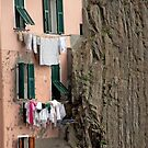 Rock Climbing Laundry by phil decocco