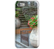 Steps Between Begonias iPhone Case/Skin