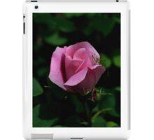 Rose Garden Visitor iPad Case/Skin