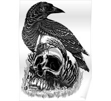 Crow and the skull Poster
