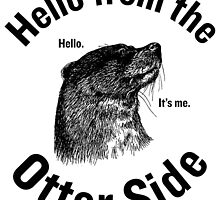 Hello from the Otter Side by diannamv4