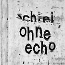 Schrei ohne Echo - screaming without echo by fuxart