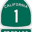 PCH - CA Highway 1 - Ft Bragg  by IntWanderer