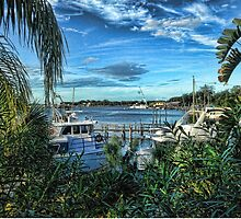 Port Richey Florida  by Jack McCabe