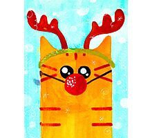 Christmas Red Cat Deer Photographic Print