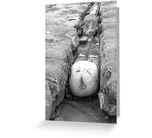 The squashed rock face Greeting Card