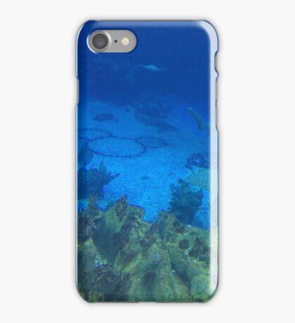 Hidden Mickey iPhone Case/Skin