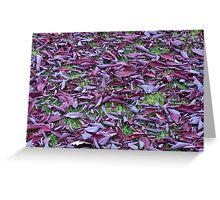 Scattered Plum Tree Leaves  Greeting Card