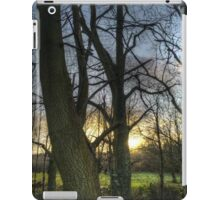 Sunlight through the trees iPad Case/Skin
