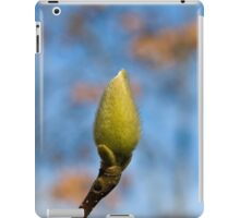 A Capsule Called Spring iPad Case/Skin
