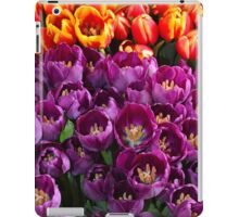 Orange and purple tulips iPad Case/Skin