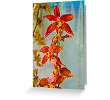 Orange against Blue Orchid Greeting Card