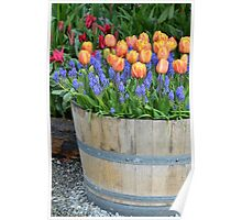 Colorful tulips barrel Poster