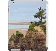 Oregon coastal scenery iPad Case/Skin