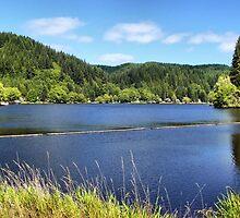 Fishhawk Lake, Oregon by Don Siebel