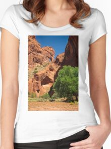 Into Your Soul Women's Fitted Scoop T-Shirt