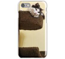 Cat Tree iPhone Case/Skin