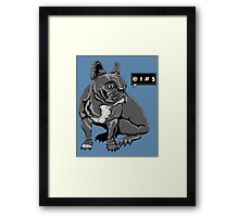 Cursing French Bulldog  Framed Print