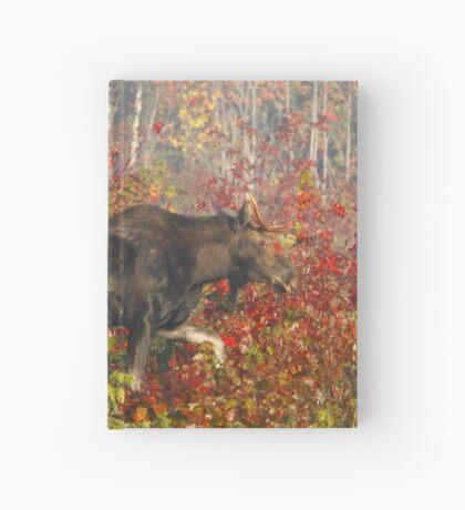 Maine Bull Moose  Hardcover Journal