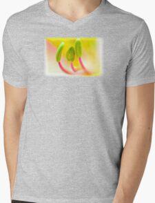 Stamens Mens V-Neck T-Shirt
