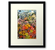 Colorful spring blossoms Framed Print