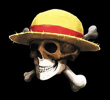 straw hat bone by simpleplan