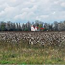 Country Church by suzannem73