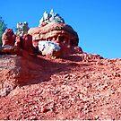 Red Rock Canyon Hoodoo, Utah, May 2008 by Laurie Puglia