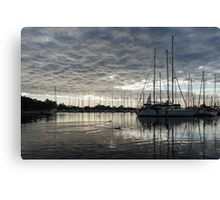 Soft Sky with Two Birds Canvas Print