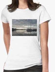 Soft Sky with Two Birds Womens Fitted T-Shirt