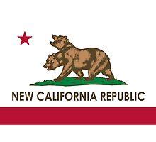 Fallout New California Republic by djcedrics