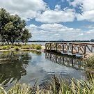 Lake Wendouree, Victoria, Australia by Pauline Tims