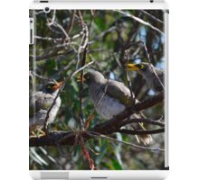 Mynah Birds three iPad Case/Skin