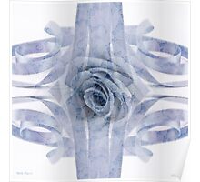 Blue Rose And Ribbon Lace Poster