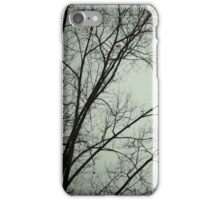 Winter Branches iPhone Case/Skin