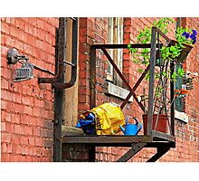 Urban Garden  Photographic Print