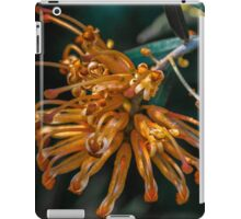 Nature's Nectar iPad Case/Skin