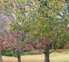 Autumn in Tweed Sticker