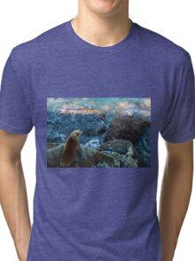 Sea kitten Tri-blend T-Shirt