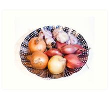 onion, shallot, garlic Art Print