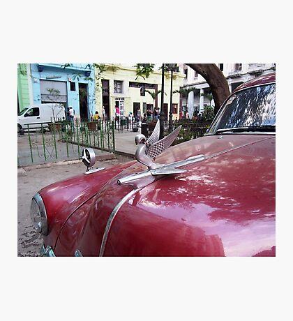 Havana Hood Ornament Photographic Print